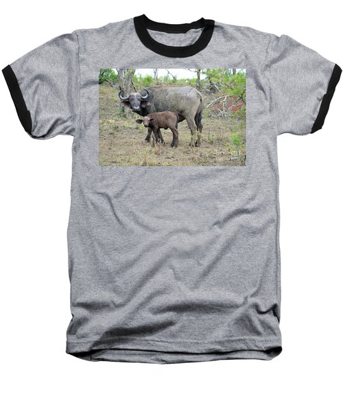 African Safari Mother And Baby Buffalo Baseball T-Shirt by Eva Kaufman