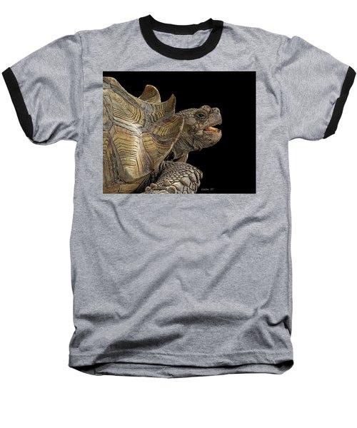 African Spurred Tortoise Baseball T-Shirt
