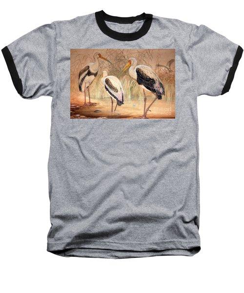 African Tantalus Pseudotantalus Ibis Baseball T-Shirt
