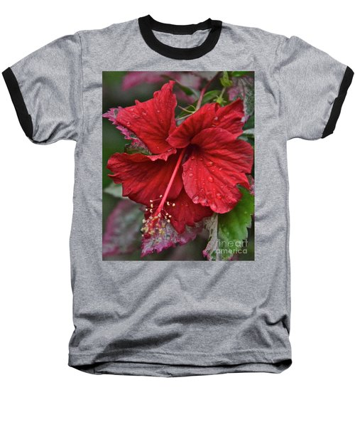 Baseball T-Shirt featuring the photograph After The Rain by Carol  Bradley