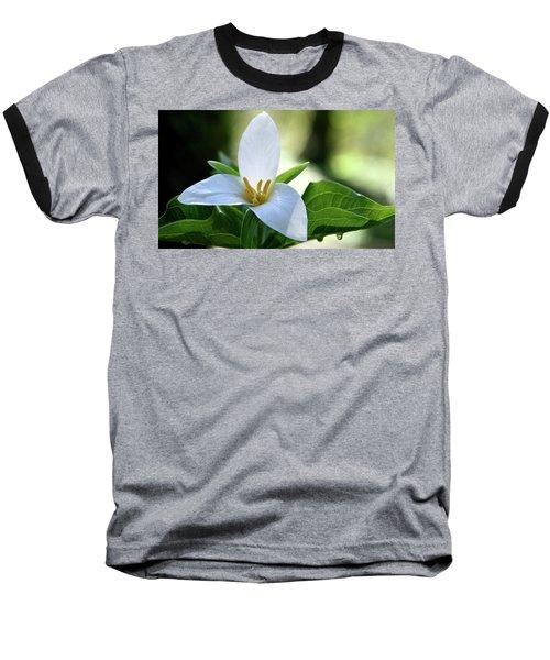 After The Rain Baseball T-Shirt by Sheila Ping