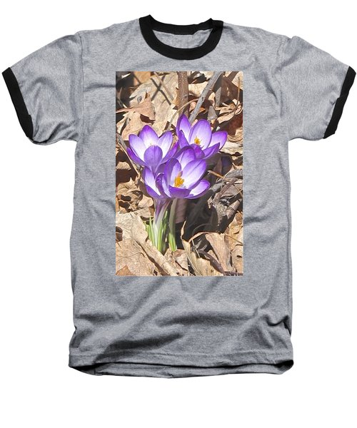 After The Snow Has Gone Baseball T-Shirt