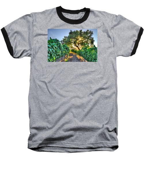 Afternoon In The Vineyard Baseball T-Shirt