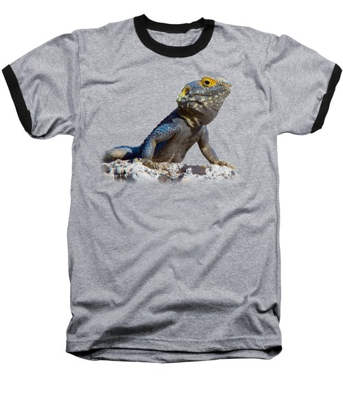 Agama Basking On A Rock T-shirt Baseball T-Shirt