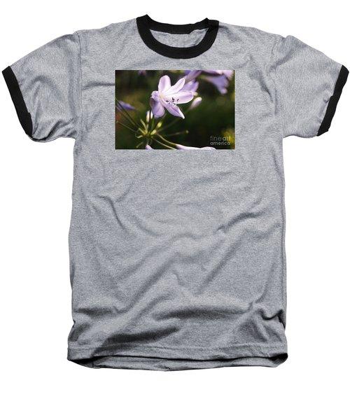 Agapanthus Baseball T-Shirt by Cassandra Buckley