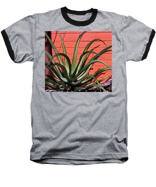 Baseball T-Shirt featuring the photograph Agave Octopus by M Diane Bonaparte