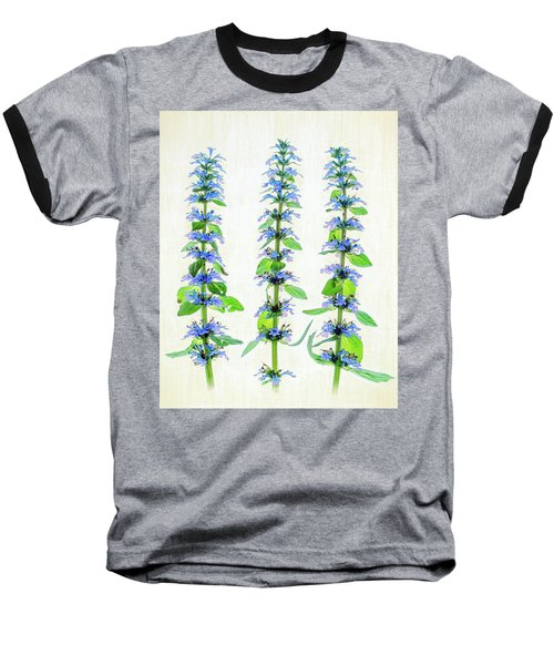 Ajuga Blooms Baseball T-Shirt by Robert FERD Frank