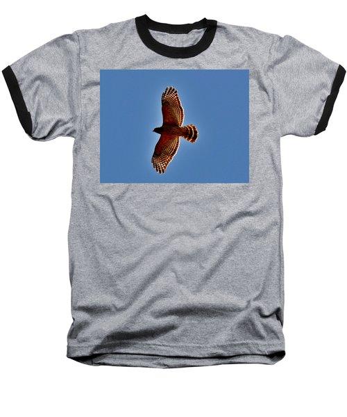 Osprey Baseball T-Shirt