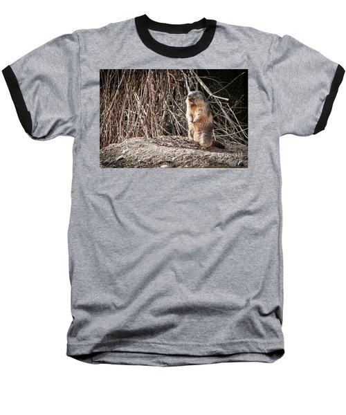 Alan,alan, Alan, Alan Baseball T-Shirt