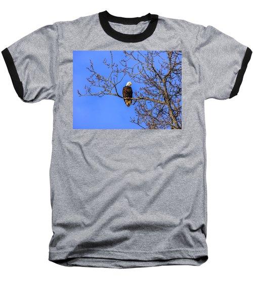 Alaskan Bald Eagle In Tree At Sunset Baseball T-Shirt
