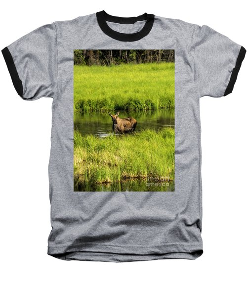 Alaskan Moose Baseball T-Shirt