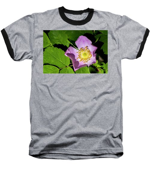Baseball T-Shirt featuring the photograph Alberta Wild Rose Opens For Early Sun by Darcy Michaelchuk