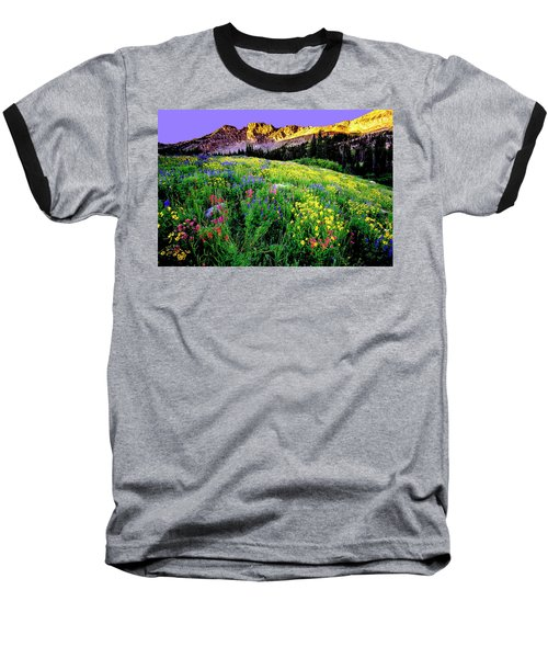 Albion Meadows Baseball T-Shirt