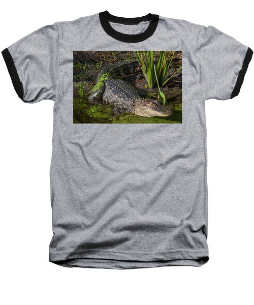 Baseball T-Shirt featuring the photograph Algae Gator by Arthur Dodd