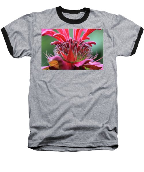 Alien Plant Life Baseball T-Shirt by David Stasiak