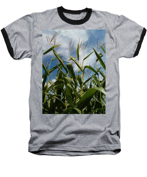 All About Corn Baseball T-Shirt by Sara  Raber