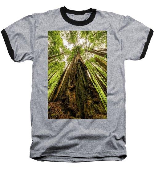 All Hail The King Baseball T-Shirt