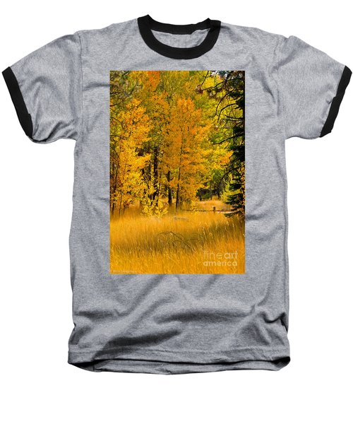 All The Soft Places To Fall Baseball T-Shirt by Mitch Shindelbower