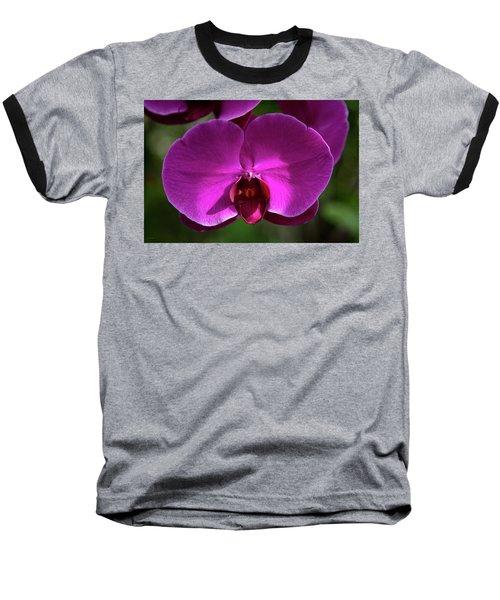 Allan Gardens Orchid Baseball T-Shirt