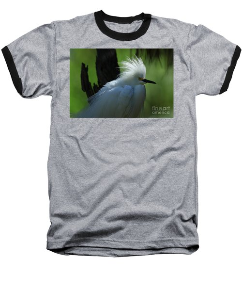 Baseball T-Shirt featuring the photograph Alligator Farm Snowy Egret by Deborah Benoit