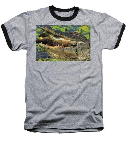 Alligator With Tilapia Baseball T-Shirt