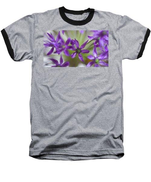 Allium Aflatunense Baseball T-Shirt