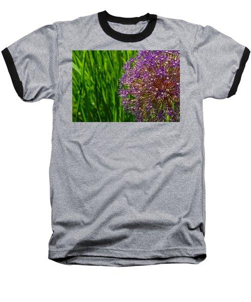 Allium Explosion Baseball T-Shirt by Tim Good