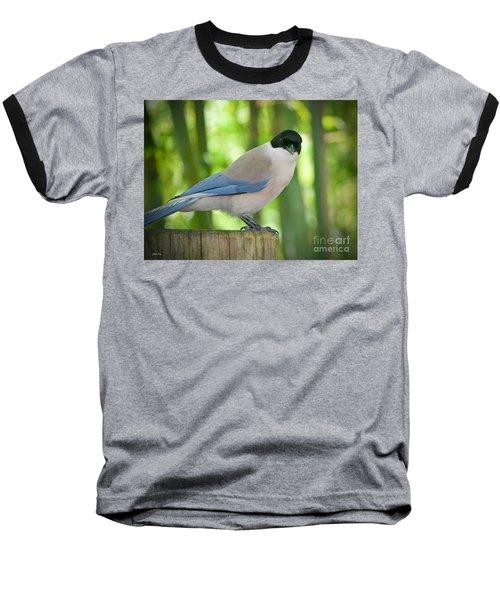Allure Baseball T-Shirt by Judy Kay