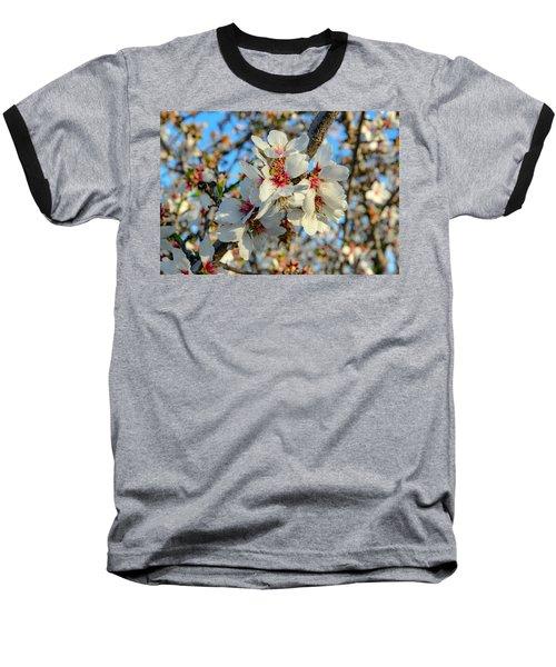 Almond Blossoms Baseball T-Shirt