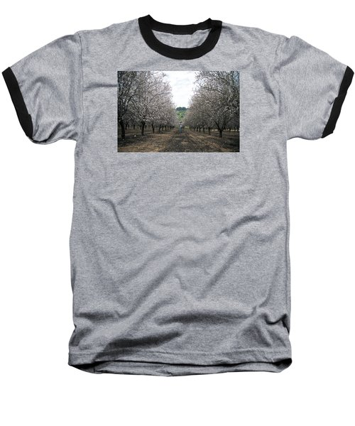 Baseball T-Shirt featuring the photograph Almonds Of Lachish by Dubi Roman