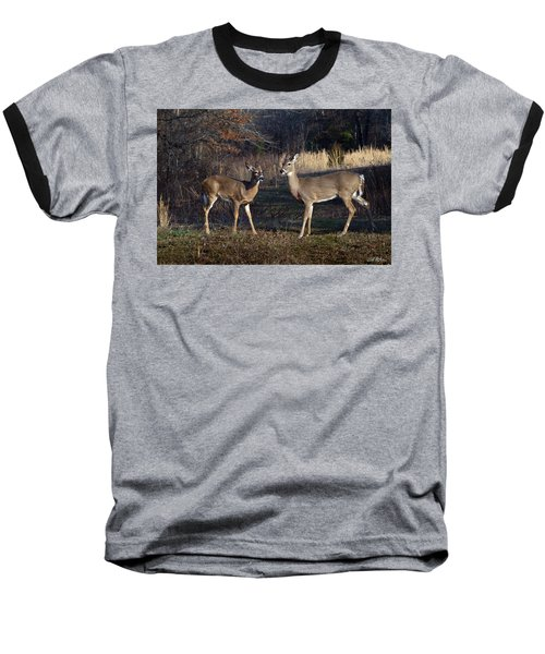 Almost Spring Baseball T-Shirt by Bill Stephens