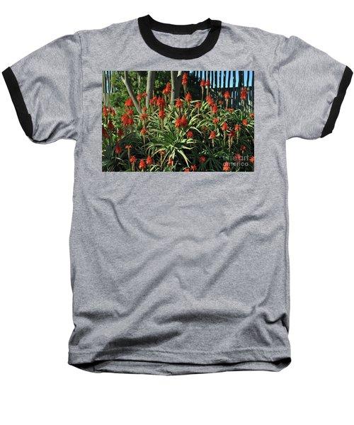 Aloe Choir Baseball T-Shirt