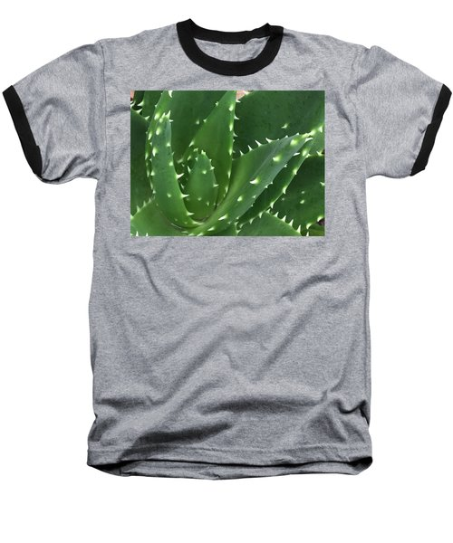 Aloe-icious Baseball T-Shirt by Russell Keating