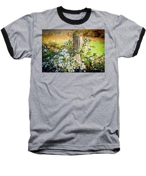Baseball T-Shirt featuring the photograph Along A Fence Row by Douglas Stucky