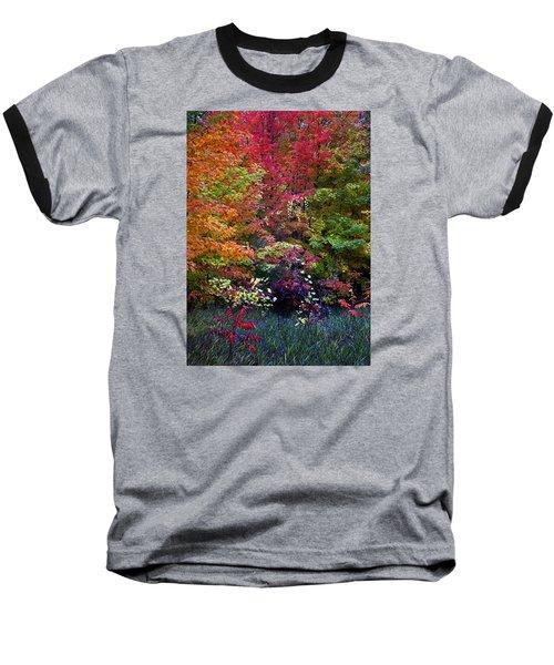 Along M37 In Autumn 2014 Baseball T-Shirt