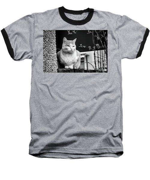Aloof Baseball T-Shirt