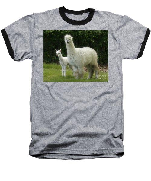 Alpaca And Foal Baseball T-Shirt