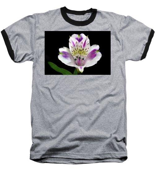 Alstroemeria Portrait. Baseball T-Shirt