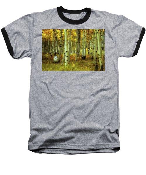 Alvarado Autumn 1 Baseball T-Shirt by Marie Leslie