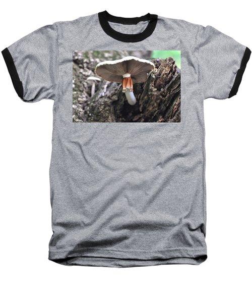 Amanita Baseball T-Shirt by Chris Flees