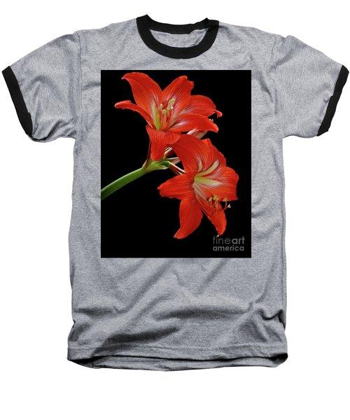Amaryllis Baseball T-Shirt