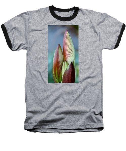 Amaryllis Buds Baseball T-Shirt