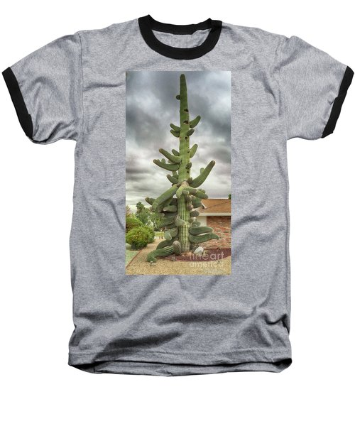 Arizona Christmas Tree Baseball T-Shirt by Anne Rodkin