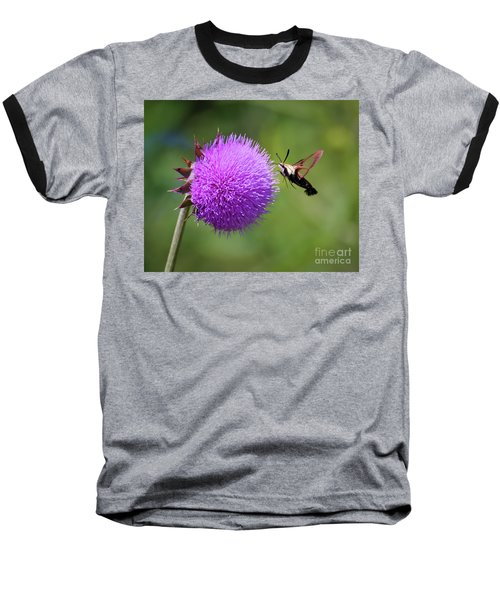Baseball T-Shirt featuring the photograph Amazing Insects - Hummingbird Moth by Kerri Farley