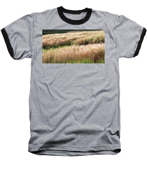 Amber Waves -  Baseball T-Shirt