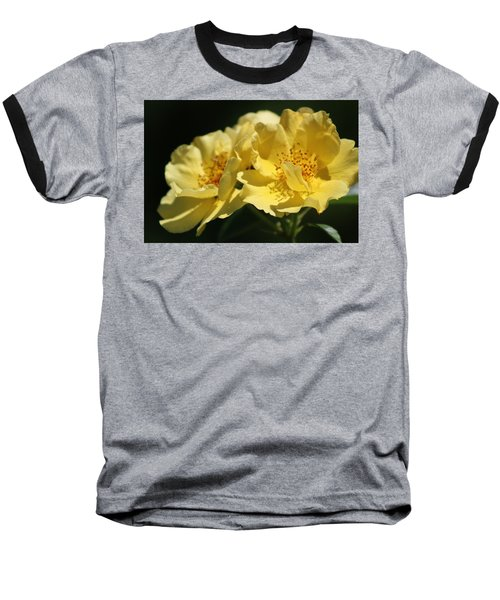 Amber Yellow Country Rose Baseball T-Shirt