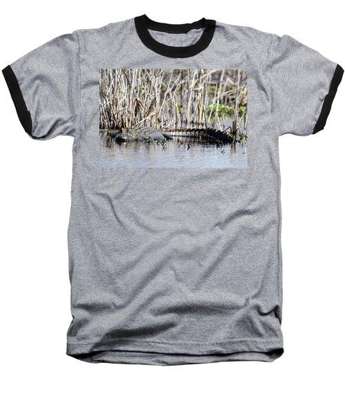 American Alligator Baseball T-Shirt by Gary Wightman