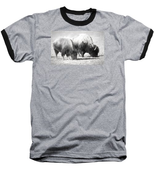 American Bison In Charcoal Baseball T-Shirt by Linda Phelps