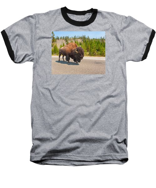 American Bison Sharing The Road In Yellowstone Baseball T-Shirt by John M Bailey