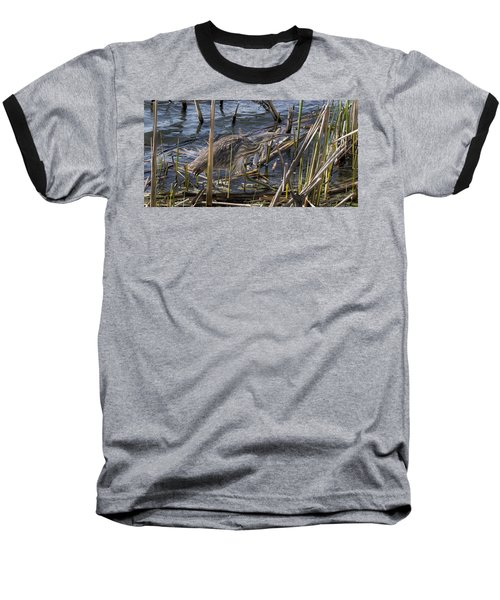 American Bittern Baseball T-Shirt